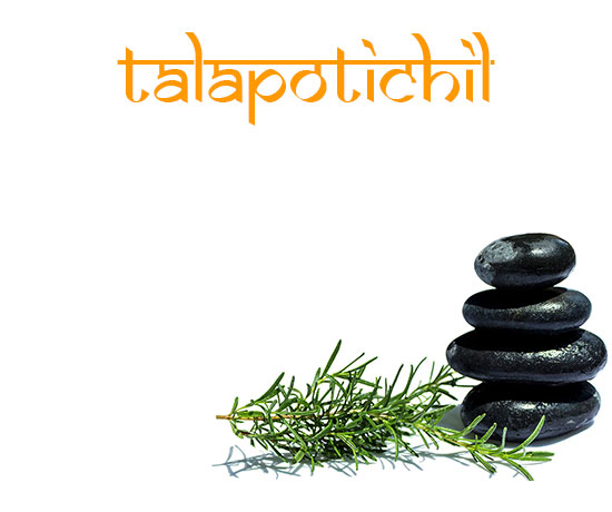 ayurveda treatment talapotichil